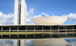 Câmara realiza live sobre Reforma Administrativa nesta quinta-feira (3); participe e denuncie! 2