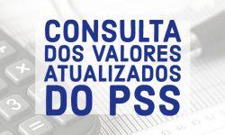 Consulta dos valores atualizados do PSS 2