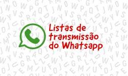 Listas de transmissão do Whatsapp do SINDIFES 5