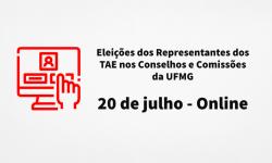 Eleições dos Representantes dos TAE nos Conselhos e Comissões da UFMG será dia 20 de julho 1